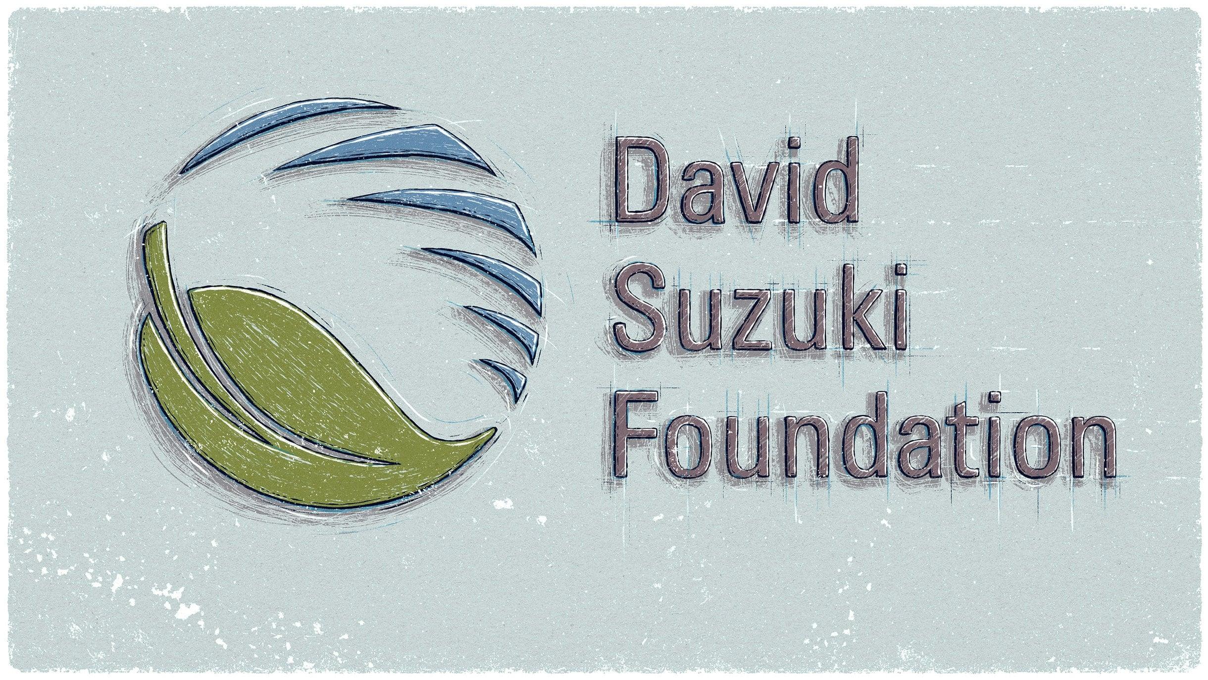 Why the David Suzuki Foundation Uses Rise HRIS